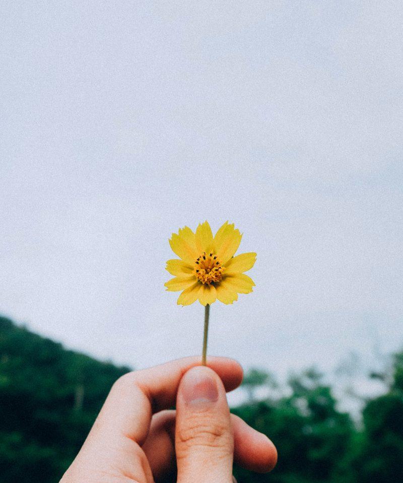 Geluk blog